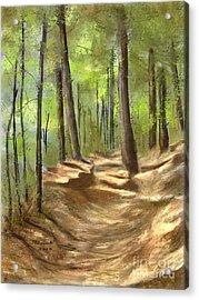 Adirondack Hiking Trails Acrylic Print