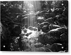 Adirondack Light Acrylic Print