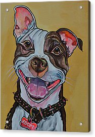 Acrylic Print featuring the painting Adopt A Pit Bull by Patti Schermerhorn