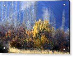 Adour Acrylic Print by Robert Shahbazi