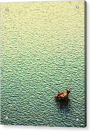 Adrift In A Sea Of Ennui Acrylic Print