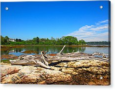 Adrift In Maine Acrylic Print
