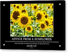 Advice From A Sunflower Acrylic Print by Teri Virbickis