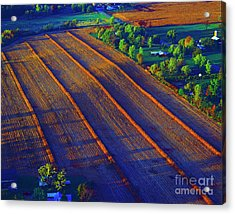 Aerial Farm Field Harvested At Sunset Acrylic Print