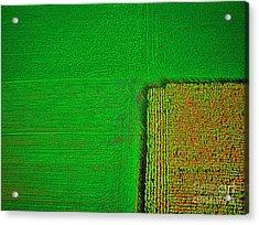 Aerial Farm Mchenry Il  Acrylic Print by Tom Jelen