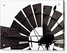 Aermotor Bird Acrylic Print by Don Durfee