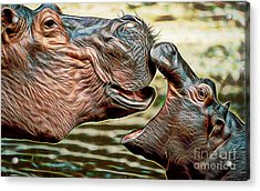 Affection Acrylic Print