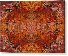 Aflame With Flower Quad Hotwaxed Version Of Acrylic/watercolour Acrylic Print