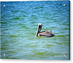 Acrylic Print featuring the photograph Afloat by Terri Mills