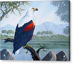 Acrylic Print featuring the painting African Fish Eagle by Anthony Mwangi