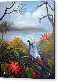 African Grey With Flowers Acrylic Print