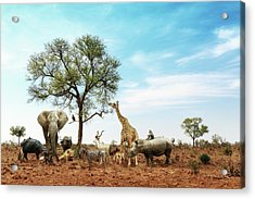 African Safari Animals Meeting Together Around Tree Acrylic Print
