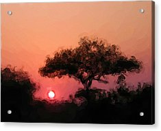 African Sunset Acrylic Print by David Lane