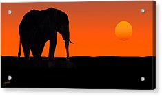 African Sunset Acrylic Print by Joe Costello