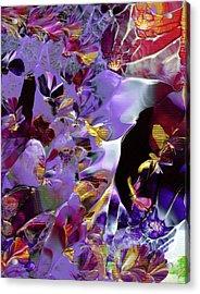 African Violet Awake #2 Acrylic Print