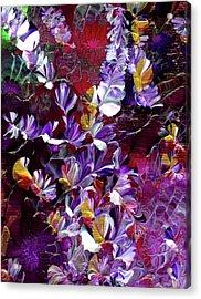 African Violet Awake #4 Acrylic Print