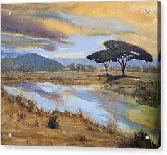 African Vista Acrylic Print