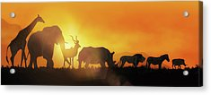 African Wildlife Sunset Silhouette Banner Acrylic Print
