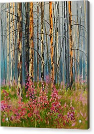 After Forest Fire Acrylic Print