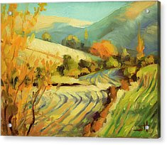Acrylic Print featuring the painting After Harvest by Steve Henderson