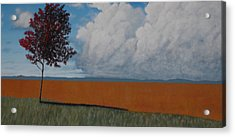 After The Harvest Acrylic Print by Candace Shockley