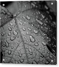 After The Rain #2 Acrylic Print