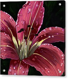 After The Rain - Lily Acrylic Print by Linda Apple