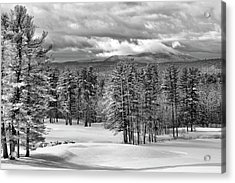 After The Snow  Acrylic Print