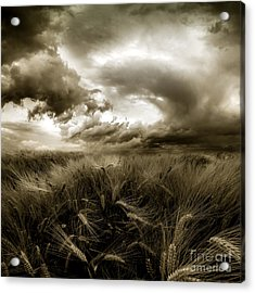 After The Storm  Acrylic Print by Franziskus Pfleghart