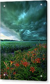 After Thought Acrylic Print by Phil Koch