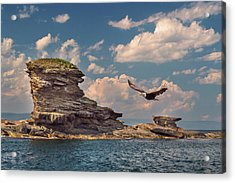 Afternoon Flight Acrylic Print by Tracy Munson
