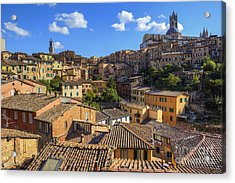 Afternoon In Siena Acrylic Print