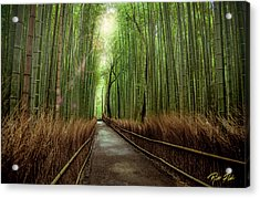 Acrylic Print featuring the photograph Afternoon In The Bamboo by Rikk Flohr