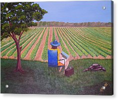 Afternoon In The Vineyard Acrylic Print