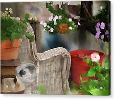 Afternoon Nap Acrylic Print by Ken Barker