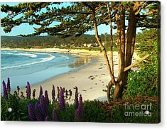 Afternoon On Carmel Beach Acrylic Print