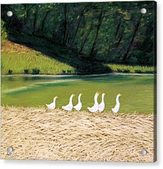 Afternoon On Goose Pond Acrylic Print by Jan Amiss