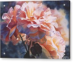 Afternoon Rose  Acrylic Print
