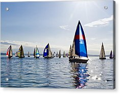 Afternoon Sailing Acrylic Print by Tom Dowd