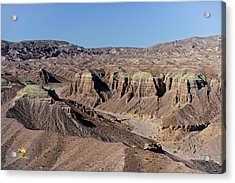 Acrylic Print featuring the photograph Afton Canyon by Jim Thompson