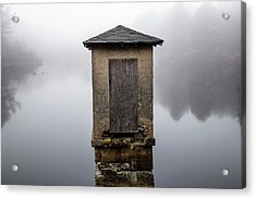 Acrylic Print featuring the photograph Against The Fog by Karol Livote