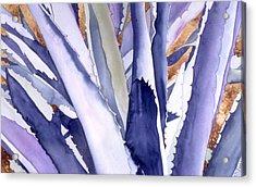 Agave 4 Acrylic Print by Eunice Olson