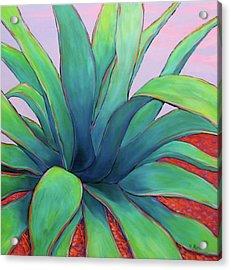 Agave Dusk Acrylic Print by Nancy Matus