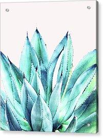 Agave Vibe Acrylic Print