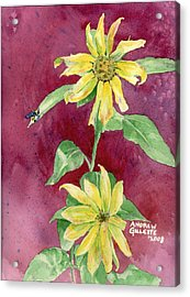 Ah Sunflowers Acrylic Print by Andrew Gillette