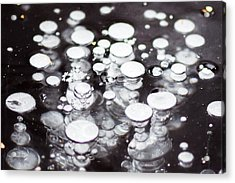 Air Trapped In Ice Acrylic Print