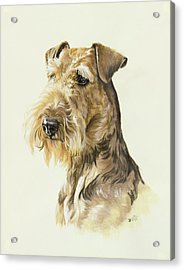 Airedale Acrylic Print by Barbara Keith
