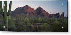 Ajo Mtn Drive Organ Pipe Cactus National Monument Acrylic Print by Steve Gadomski