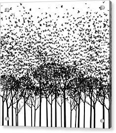 Aki Monochrome Acrylic Print by Cynthia Decker