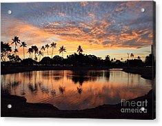 Ala Moana Sunset Acrylic Print by DJ Florek